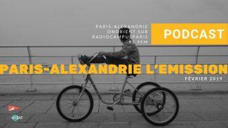ParisAlexandrie #23